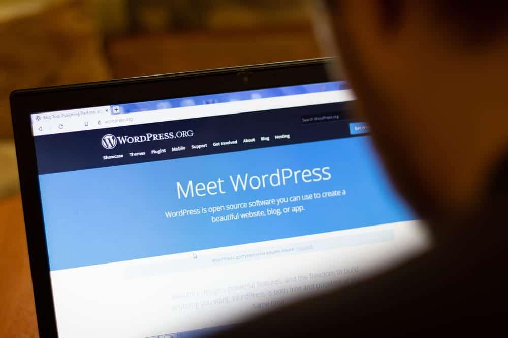 Boost website engagement with WordPress notification plugins.